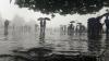 দুদিনের শ্রাবণ ধারার মধ্যেই এল স্বস্তির খবর, দুর্যোগ রুখতে নবান্নে চালু হেল্পলাইন