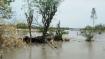 নদীর করালগ্রাসে বাঁধ ভেঙে প্লাবিত গ্রামের পর গ্রাম, পুজোর মুখে ভাঙনের ছবি