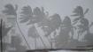 ঘূর্ণিঝড় বুরেভি কোন পথে এগোচ্ছে, এবার কোন উপকূলে হানা, জানাল মৌসম ভবন