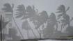 সর্বশক্তি নিয়ে আছড়ে পড়ল সাইক্লোন 'বুরেভি'! ল্যান্ডফলের পর ঝড় কোনদিকে এগোতে শুরু করল