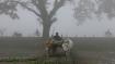 একধাক্কায় তাপমাত্রা বাড়ল ৫ ডিগ্রির বেশি, জেলায় জেলায় বৃষ্টির পূর্বাভাস! বাংলার আবহাওয়ার পরিস্থিতি একনজরে