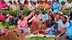 পুজো থেকে প্রচার, ভোটের মুখে ব্যক্তিগত ক্যারিশ্মাতেই অসম মাতালেন প্রিয়াঙ্কা গান্ধী