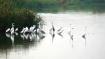 পরিযায়ী পাখিদের চারণভূমি উত্তরবঙ্গের এই স্থানে বাড়ছে পর্যটকদের ভিড়, জেনে নিন কারণ