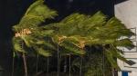 পঞ্চমদফার ভোটে রাজ্য জুড়ে কি কালবৈশাখীর হানা, বাংলার কোন জেলায় কী পরিস্থিতি, আবহাওয়ার পূর্বাভাস একনজরে