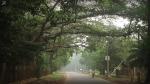 আবহাওয়ার খবর: প্রবল বৃষ্টির সঙ্গে নামবে রাতের তাপমাত্রা, বাংলার বিভিন্ন জেলার হাওয়া অফিসের পূর্বাভাস