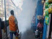 ফিরছে আতঙ্ক! কলকাতার একাধিক ওয়ার্ডে ডেঙ্গির থাবা