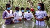 সুন্দরবনে গাছকে রাখি পরিয়ে অনন্য উদযাপন