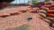 অগ্নিমূল্য পেঁয়াজের ঝাঁঝে নাভিশ্বাস মধ্যবিত্তের! লাগামছাড়া মূল্য বৃদ্ধির পিছনে কোন কারণ রয়েছে