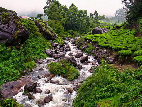 Image result for কুর্গ india