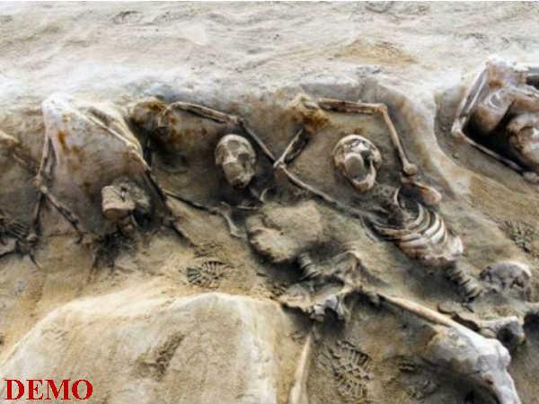 ইরাকে মিলল গণকবর, নিখোঁজ ভারতীয়দের ডিএনএ নমুনা পাঠাচ্ছে বিদেশমন্ত্রক