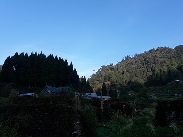 Gorkhey Is Picturesque Village Close Darjeeling Himalaya