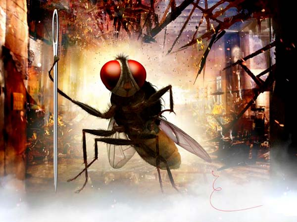 Conversation Between Mosquito Man