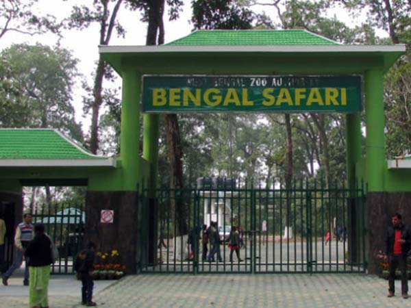 Leopard Safari Start At The North Bengal Wild Animals Park From Poila Boisakh