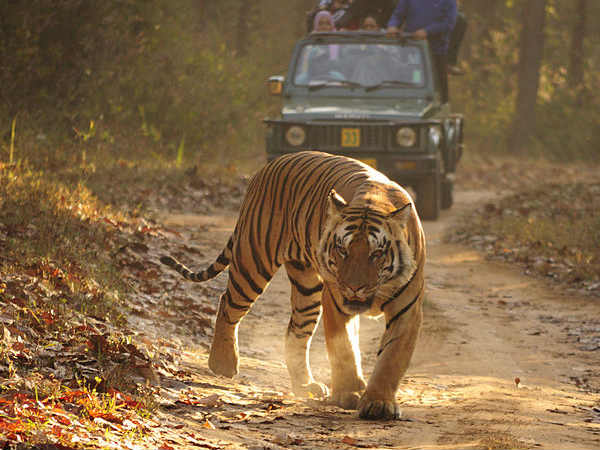 Bengal Govt Emphasise On Adventure Tourism Across State