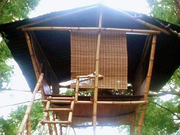 Best Treehouses South India As Honeymoon Destination