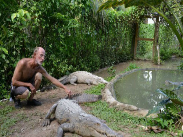 Nearly 300 Crocodiles Killed Indonesian A Revenge Attack