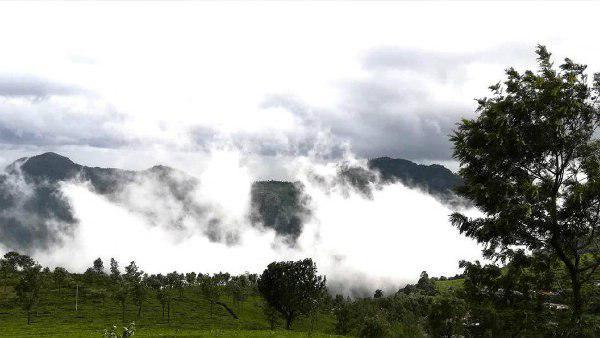 Ooty Tourism:উটির তাপমাত্রা এখন ১৮ ডিগ্রির আশপাশে! নীলগিরি অরণ্যের এই নগরী মুগ্ধ করতে বাধ্য