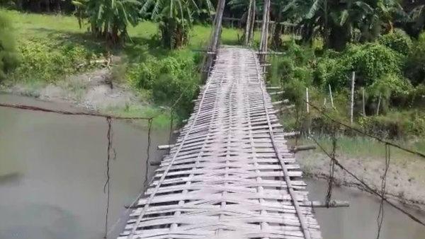 আলিপুরদুয়ারের বামনী নদীর সেতু সংস্কারের দাবি