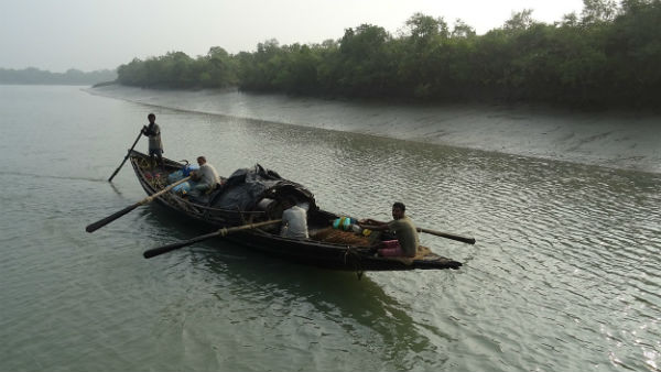 Sundarban Is The Major Tourist Attraction Of West Bengal