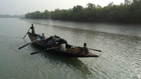 আম্ফানে সুন্দরবনে ভেঙেছে নেট ফেন্সিং, নৌকা থেকে বাঘে টেনে নিয়ে গেল মৎস্যজীবীকে