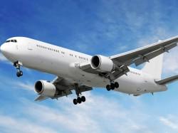 Pilot Insists For Having Sandwich Flight Delayed