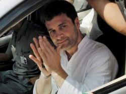 Rahul Gandhi Furnished Wrong Information Regarding His Mphil