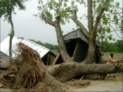 Killed As Cyclonic Storm Devastated Several Parts Of Bd