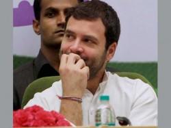 Congress Has Complete Faith In Rahul Gandhi Says Rashid Alvi