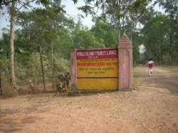Exotic Trip To Piyali Island The Gateway Of Sundarbans