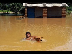 Flood Situation In Odisha Worsens Death Toll Rises To