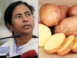 Wb Protective Potato Politics Irk Odisha Jharkhand May Dial Modi Over Potato Ban