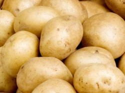Three Day Potato Strike Withdrawn Next Course Of Action To Be Decided On 25th
