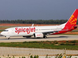 Spice Jet Plane Collides With Buffalo During Take Off Escapes Narrowly