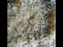 State Govt To Sell Bengals Quality Rice In Four Foreign Cities