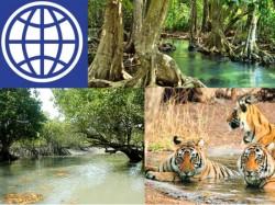Sunderban S Sea Level Rising At 3 8 Mm Per Year World Bank