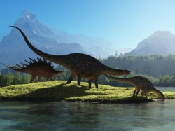 Omg We Are Drinking Dinosaur S Urine Everyday Watch Video To Understand The Fact