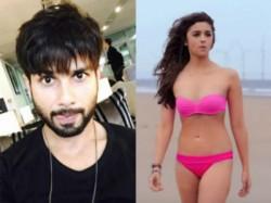 Secret Revealed Shahid Kapoor Says Alia Bhatt Was Uncomfortable In Bikini Shaandaar