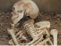 Skeleton Case Son Spend 3 Nights With Mother S Dead Body