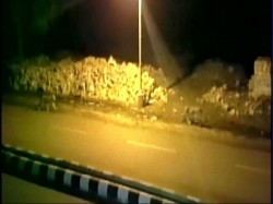 Video 8 Lion S Roaming In Gujarat Town