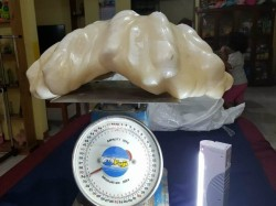 World S Biggest Pearl Comes From Under Fisherman S Bed Philippines