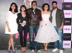 Bollywood 10 National Award Winners Come Together Pink Movie