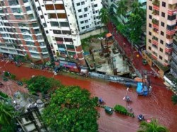 Animal Sacrifices Turn Dhaka Streets Into Rivers Blood Bangladesh
