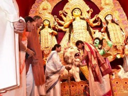 Durga Puja Organise Tmc Leader Rewarded Spread The Party Organisation