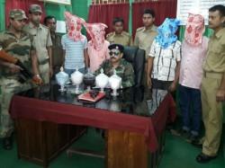 Forest Range Officials Siliguri Seize Snake Venom Arrest 4 People