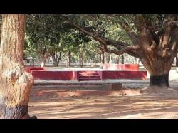 Viswabharati Student Was Found Unconscious At Dubrajpur