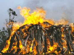 Man Ends Life His Own Funeral Pyre At Home