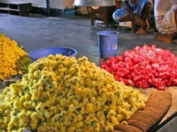 Flower Farmers Are Crisis Note Ban