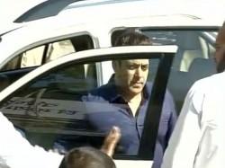 Blackbuck Died Natural Causes Salman Claims Jodhpur Court