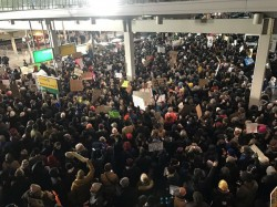 Hundreds Gather Protest New York Airport Protest Donald Trump Decision