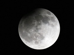 Spacex Send Two Tourists Around Moon